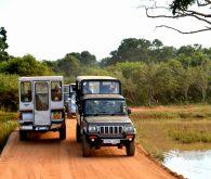 V Tissamaharamo na safari